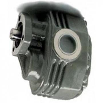 6L 12V Idraulica Pompa Oleodinamica Auto 2850R/Min Nuovo Be