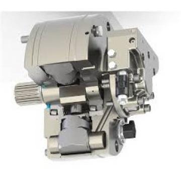 Daikin Ndj Olio Idraulico Motore Pompa NDJ159-152-20 Pistone V15A1RX-95S14