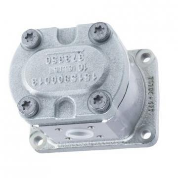 MANNESMANN REXROTH pgf2-22/011rh01ve4 POMPA IDRAULICA + supporto de100lb4 Motor-used