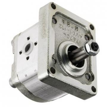 Rexroth Flügelzellenpumpe 1 PV2V3-31/40RA01MC100A1 GEB