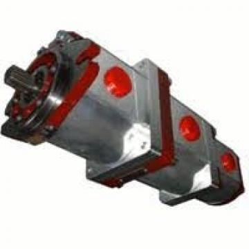 CASAPPA Zahnradpumpen Serie APL-B Pumpe APL 82B0 43T0