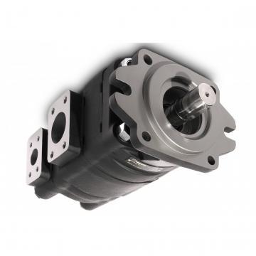 CASAPPA Zahnradpumpen Kit für Mehrfachpumpen Set Schrauben PLP 30 M12x270