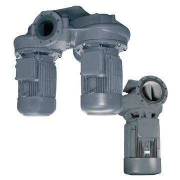Lowara DL Pompa sommergibile acque reflue DLVM100/A 1,1KW 1,5HP 1x230V 50Hz