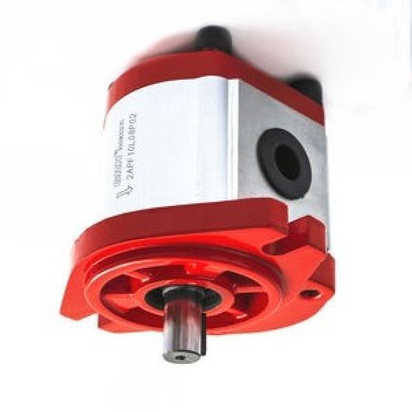 MOTORE KOHLER 4T 6,5 HP CON LANTERNA E POMPA IDRAULICA DA 5,8 cc. OLEODINAMICA #2 image