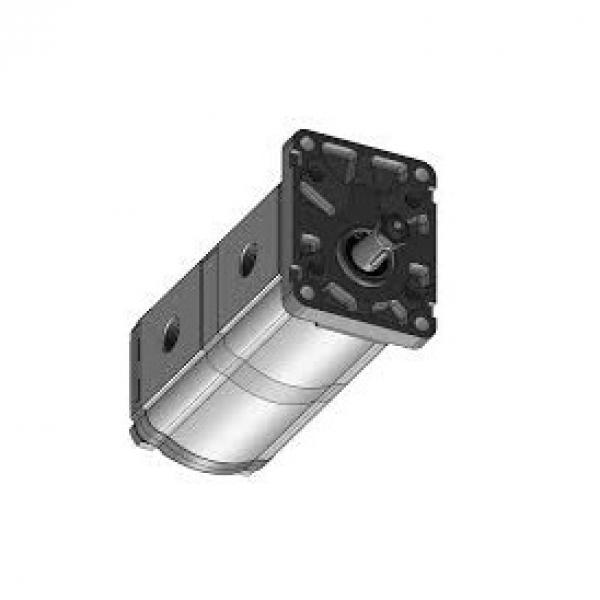 David Brown Hydraulic Gear Pump - PA2215/1905G5B26B26C #1 image