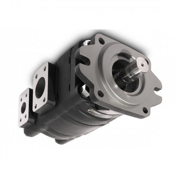 CASAPPA Zahnradpumpen Kit für Mehrfachpumpen Set Schrauben PLP 30 M12x270 #1 image